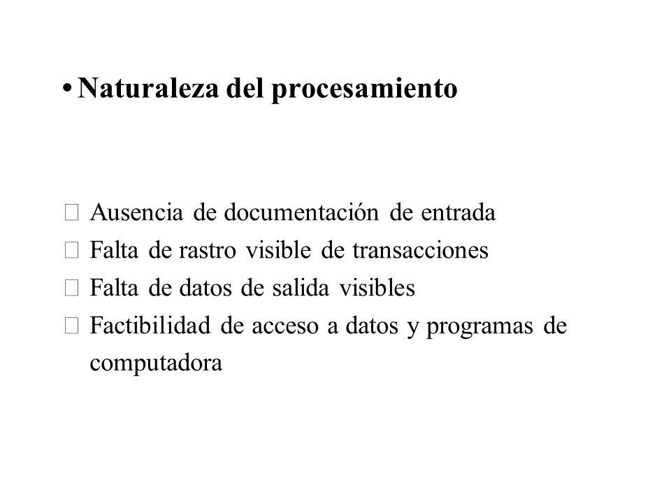 Naturaleza del procesamiento Ausencia de documentación de entrada Falta de rastro visible de transacciones Falta de datos de salida visibles Factibili