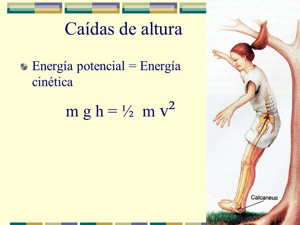 Caídas de altura Energía potencial = Energía cinética m g h = ½ m v ²