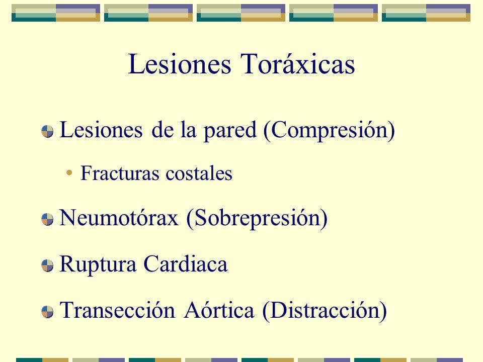 Lesiones Toráxicas Lesiones de la pared (Compresión) Fracturas costales Neumotórax (Sobrepresión) Ruptura Cardiaca Transección Aórtica (Distracción)