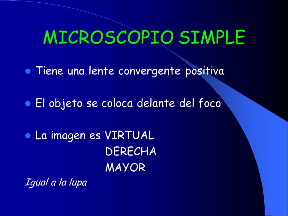 MICROSCOPIO SIMPLE Tiene una lente convergente positiva El objeto se coloca delante del foco La imagen es VIRTUAL DERECHA MAYOR Igual a la lupa
