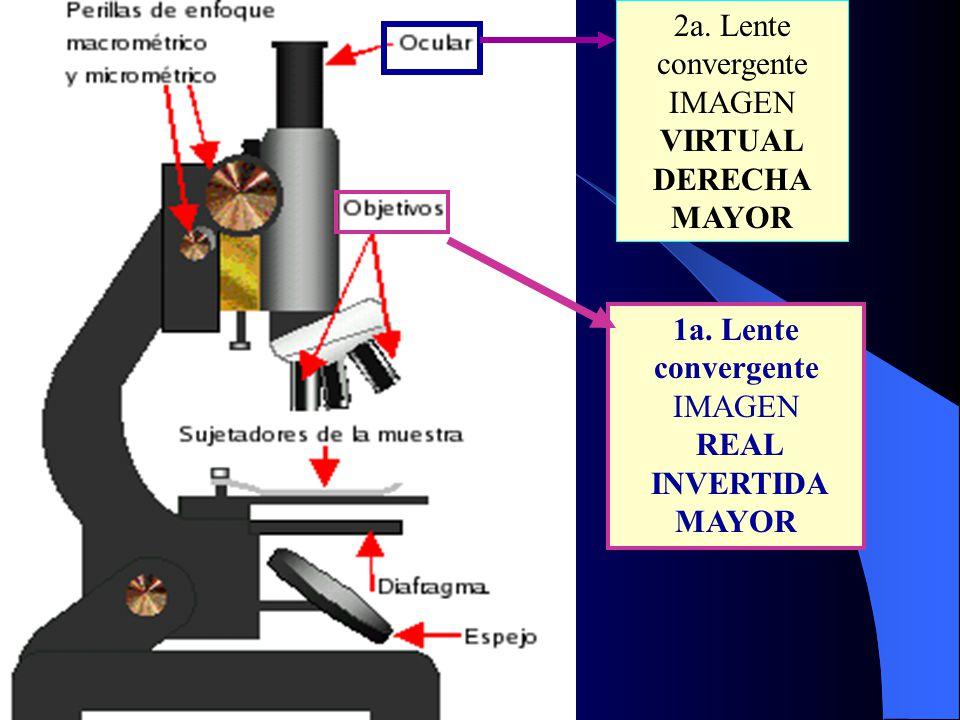 1a. Lente convergente IMAGEN REAL INVERTIDA MAYOR 2a. Lente convergente IMAGEN VIRTUAL DERECHA MAYOR