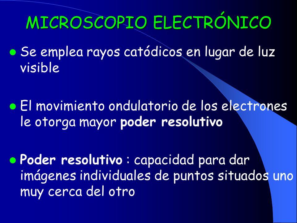 MICROSCOPIO ELECTRÓNICO Se emplea rayos catódicos en lugar de luz visible El movimiento ondulatorio de los electrones le otorga mayor poder resolutivo Poder resolutivo : capacidad para dar imágenes individuales de puntos situados uno muy cerca del otro