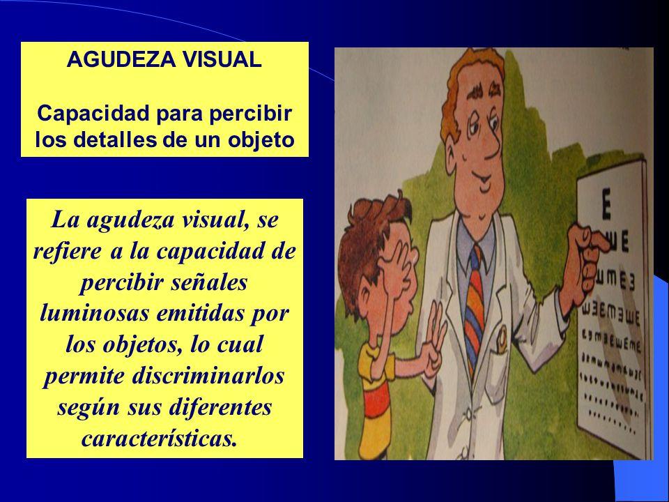 AGUDEZA VISUAL Capacidad para percibir los detalles de un objeto La agudeza visual, se refiere a la capacidad de percibir señales luminosas emitidas por los objetos, lo cual permite discriminarlos según sus diferentes características.