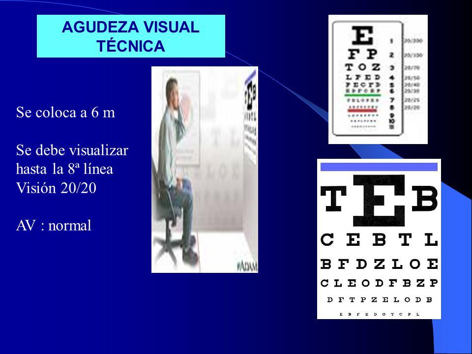 AGUDEZA VISUAL TÉCNICA Se coloca a 6 m Se debe visualizar hasta la 8ª línea Visión 20/20 AV : normal