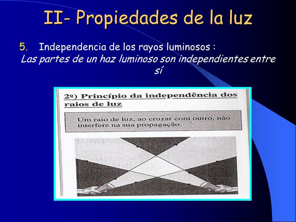 II- Propiedades de la luz 5.Independencia de los rayos luminosos : Las partes de un haz luminoso son independientes entre sí