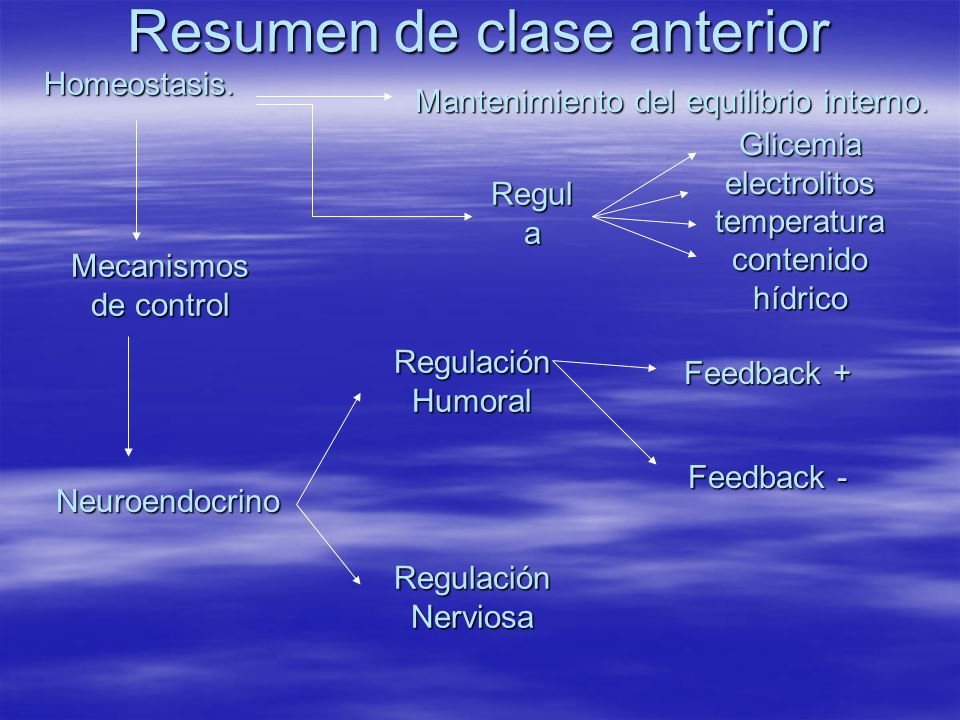 Homeostasis. Mantenimiento del equilibrio interno. Glicemia electrolitos temperatura contenido hídrico Regul a Mecanismos de control Neuroendocrino Re