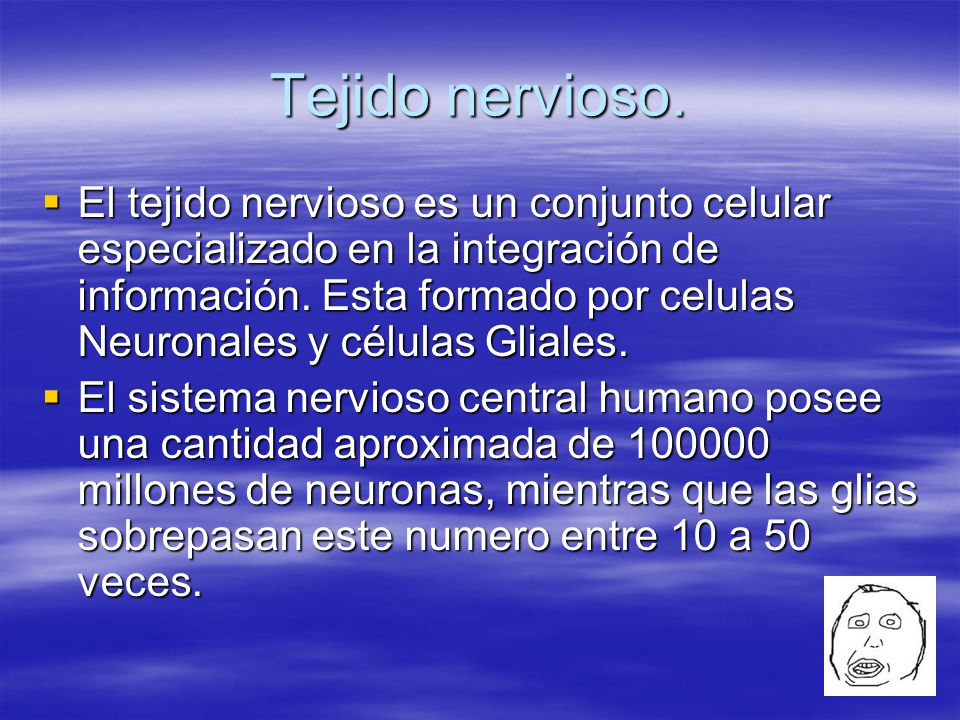 NeuroGlias También conocidas como células gliales.