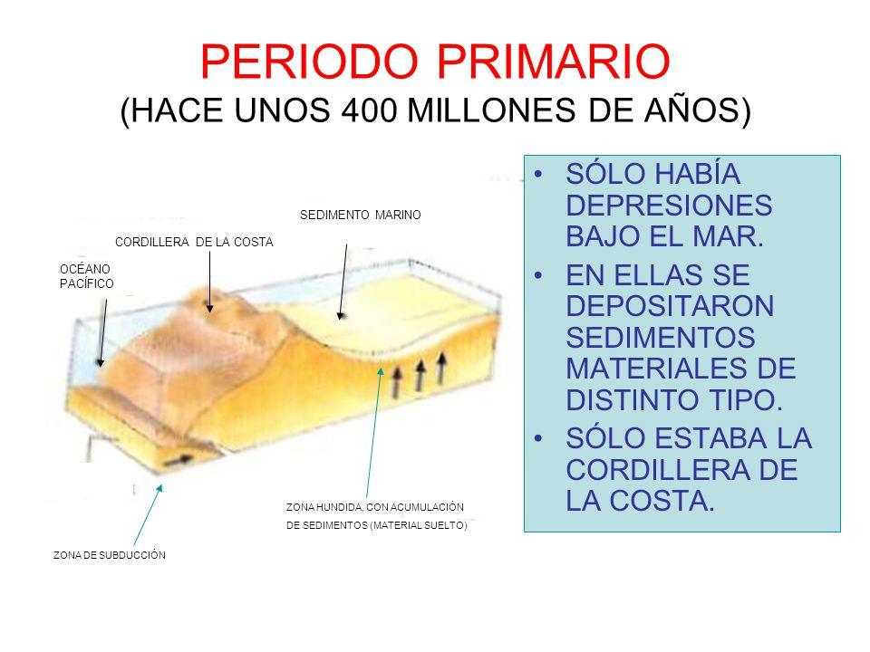 PERIODO PRIMARIO (HACE UNOS 400 MILLONES DE AÑOS) SÓLO HABÍA DEPRESIONES BAJO EL MAR. EN ELLAS SE DEPOSITARON SEDIMENTOS MATERIALES DE DISTINTO TIPO.