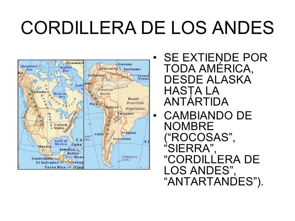 CORDILLERA DE LOS ANDES SE EXTIENDE POR TODA AMÉRICA, DESDE ALASKA HASTA LA ANTÁRTIDA CAMBIANDO DE NOMBRE (ROCOSAS, SIERRA, CORDILLERA DE LOS ANDES, A