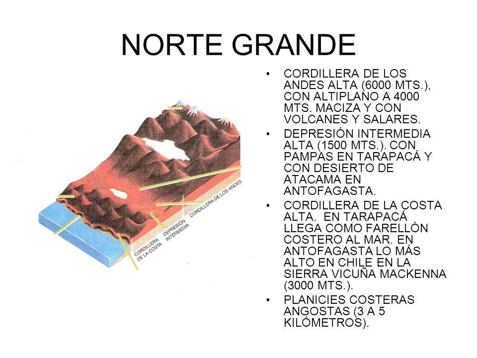 NORTE GRANDE CORDILLERA DE LOS ANDES ALTA (6000 MTS.), CON ALTIPLANO A 4000 MTS. MACIZA Y CON VOLCANES Y SALARES. DEPRESIÓN INTERMEDIA ALTA (1500 MTS.