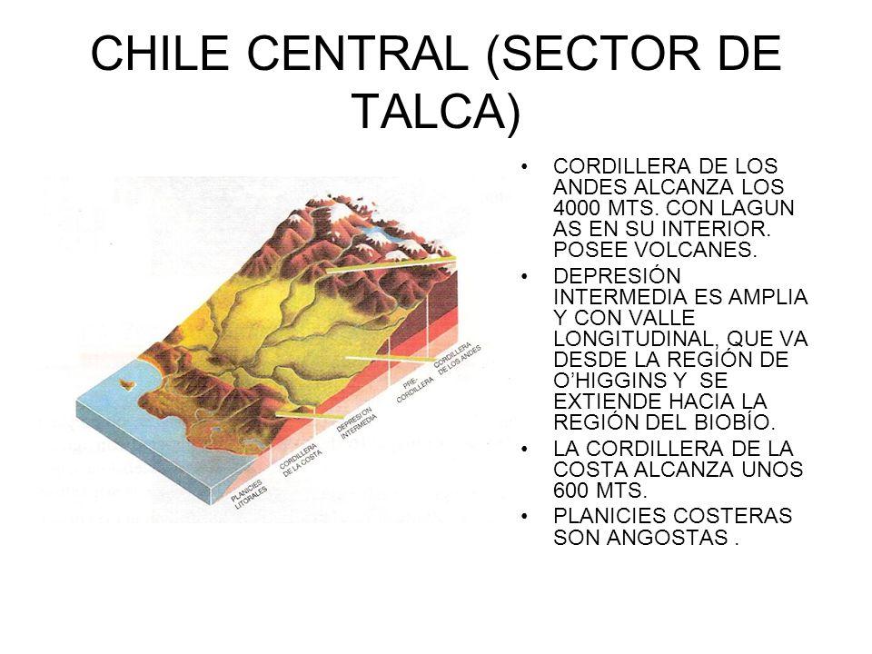 CHILE CENTRAL (SECTOR DE TALCA) CORDILLERA DE LOS ANDES ALCANZA LOS 4000 MTS. CON LAGUN AS EN SU INTERIOR. POSEE VOLCANES. DEPRESIÓN INTERMEDIA ES AMP