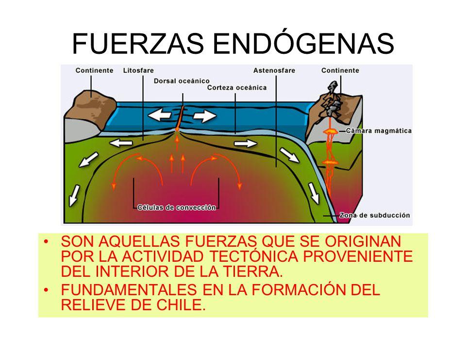 CARACTERÍSTICAS DEL RELIEVE EN CHILE POR ZONAS GEOGRÁFICAS NORTE GRANDE NORTE CHICO CHILE CENTRAL ZONA SUR ZONA DE LOS LAGOS ZONA AUSTRAL
