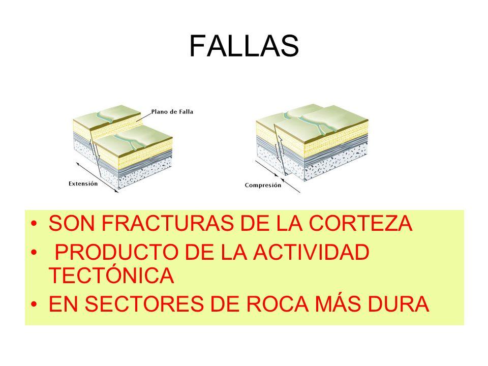 FALLAS SON FRACTURAS DE LA CORTEZA PRODUCTO DE LA ACTIVIDAD TECTÓNICA EN SECTORES DE ROCA MÁS DURA