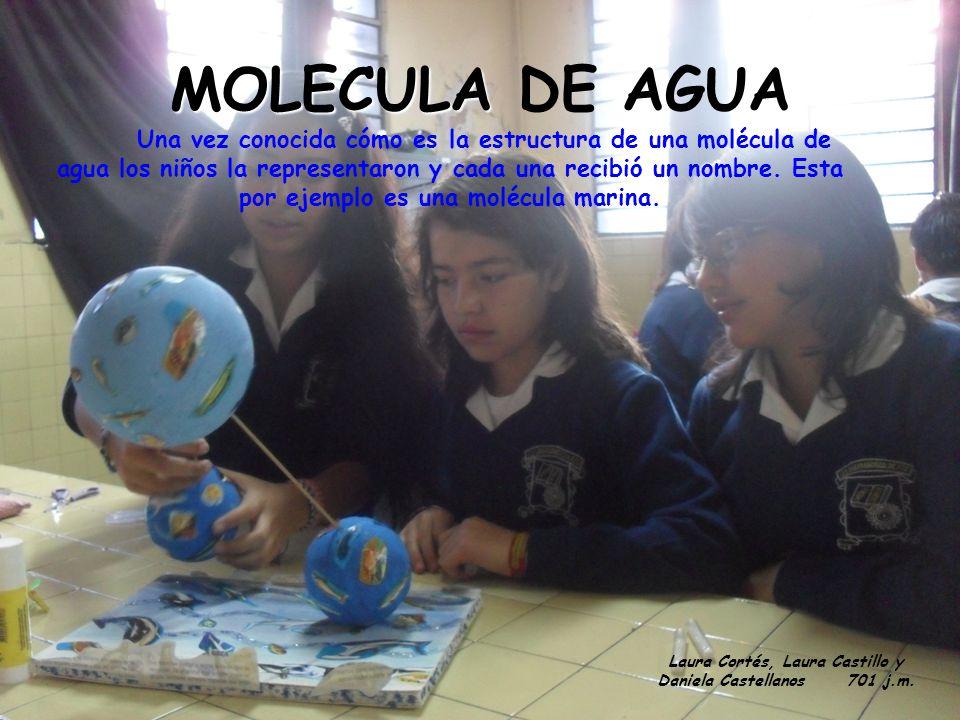 MOLECULA MOLECULA DE AGUA Una vez conocida cómo es la estructura de una molécula de agua los niños la representaron y cada una recibió un nombre. Esta