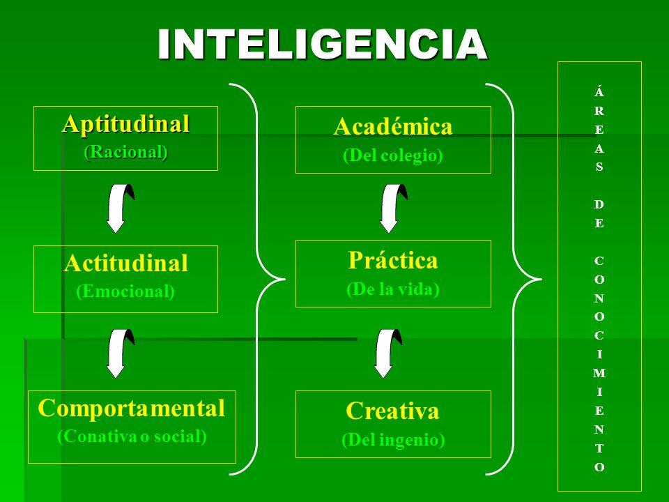 INTELIGENCIA INTELIGENCIAAptitudinal(Racional) Actitudinal (Emocional) Comportamental (Conativa o social) Académica (Del colegio) Práctica (De la vida