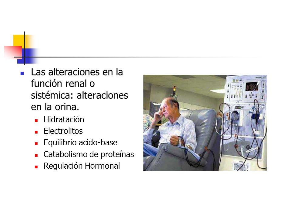 Las alteraciones en la función renal o sistémica: alteraciones en la orina. Hidratación Electrolitos Equilibrio acido-base Catabolismo de proteínas Re