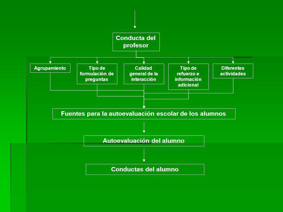 Conducta del profesor AgrupamientoTipo de formulación de preguntas Calidad general de la interacción Tipo de refuerzo e información adicional Diferent