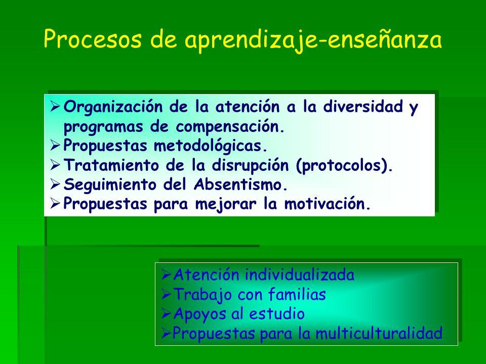 Procesos de aprendizaje-enseñanza Atención individualizada Trabajo con familias Apoyos al estudio Propuestas para la multiculturalidad Atención indivi