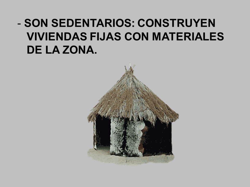 - SON SEDENTARIOS: CONSTRUYEN VIVIENDAS FIJAS CON MATERIALES DE LA ZONA.