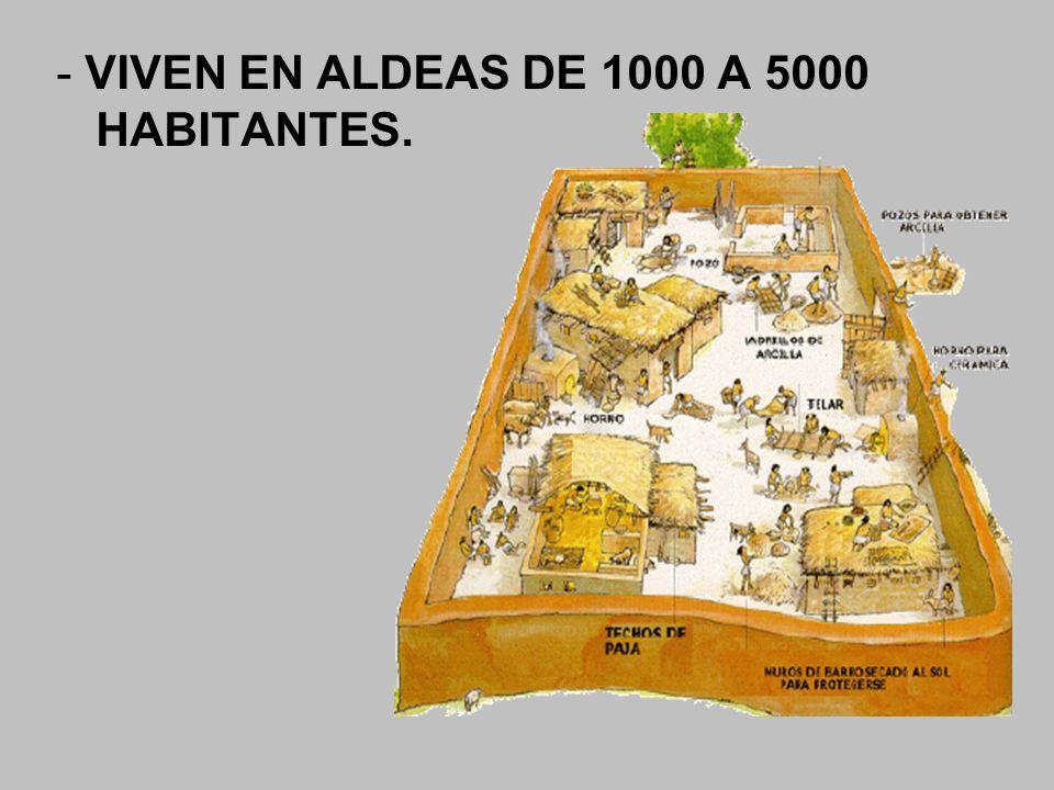 - VIVEN EN ALDEAS DE 1000 A 5000 HABITANTES.