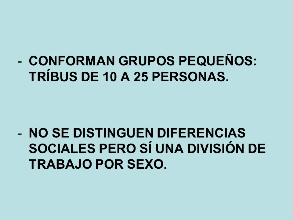-CONFORMAN GRUPOS PEQUEÑOS: TRÍBUS DE 10 A 25 PERSONAS. -NO SE DISTINGUEN DIFERENCIAS SOCIALES PERO SÍ UNA DIVISIÓN DE TRABAJO POR SEXO.