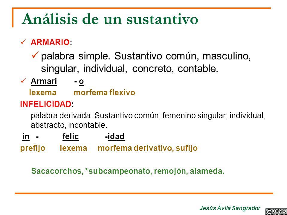 Jesús Ávila Sangrador Análisis de un sustantivo ARMARIO: palabra simple. Sustantivo común, masculino, singular, individual, concreto, contable. Armari
