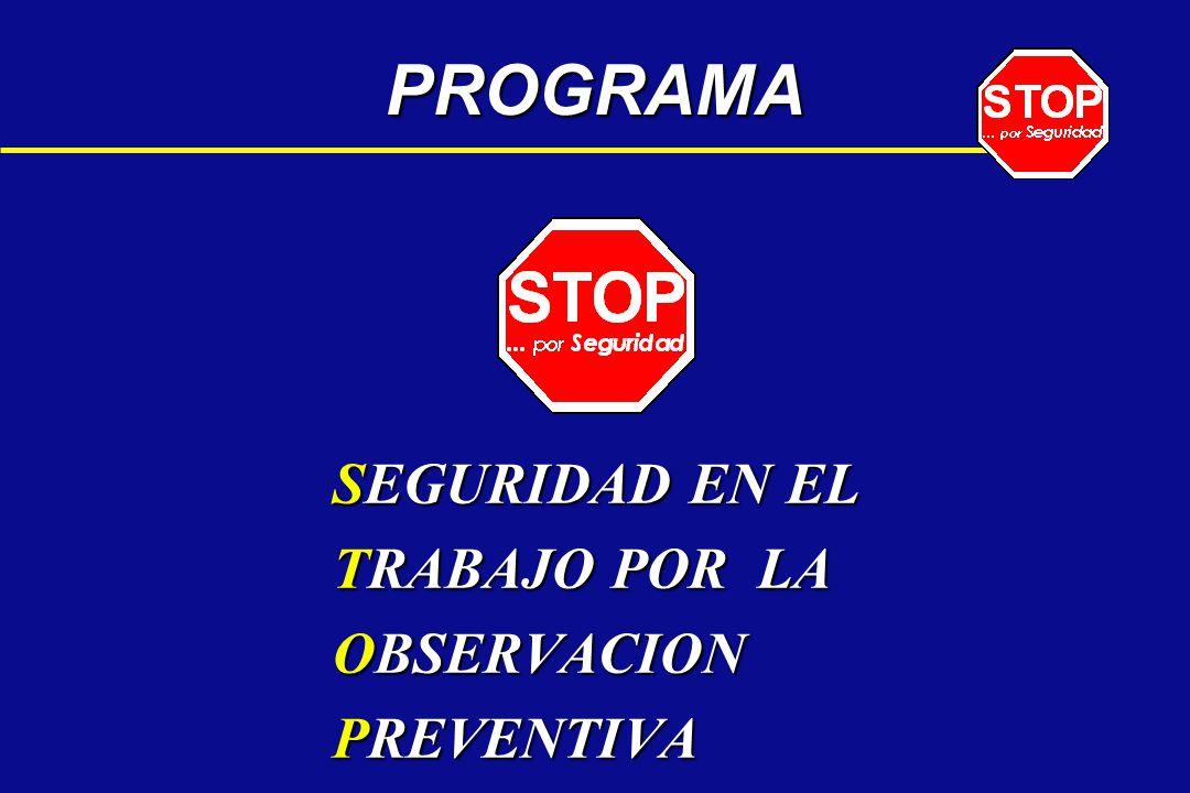 PROGRAMA SEGURIDAD EN EL TRABAJO POR LA OBSERVACION PREVENTIVA
