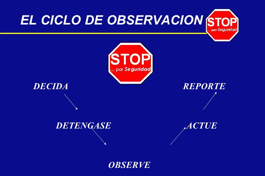 EL CICLO DE OBSERVACION DECIDA REPORTE DETENGASE ACTUE OBSERVE