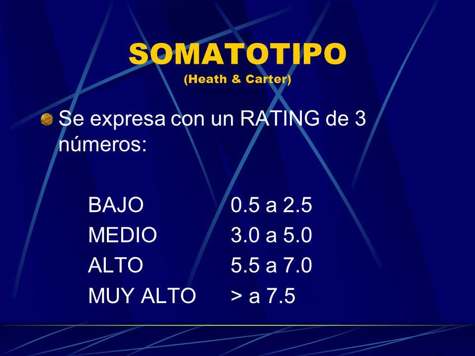 SOMATOTIPO (Heath & Carter) Se expresa con un RATING de 3 números: BAJO0.5 a 2.5 MEDIO3.0 a 5.0 ALTO5.5 a 7.0 MUY ALTO> a 7.5