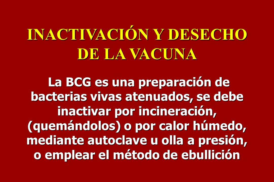 La BCG es una preparación de bacterias vivas atenuados, se debe inactivar por incineración, (quemándolos) o por calor húmedo, mediante autoclave u oll