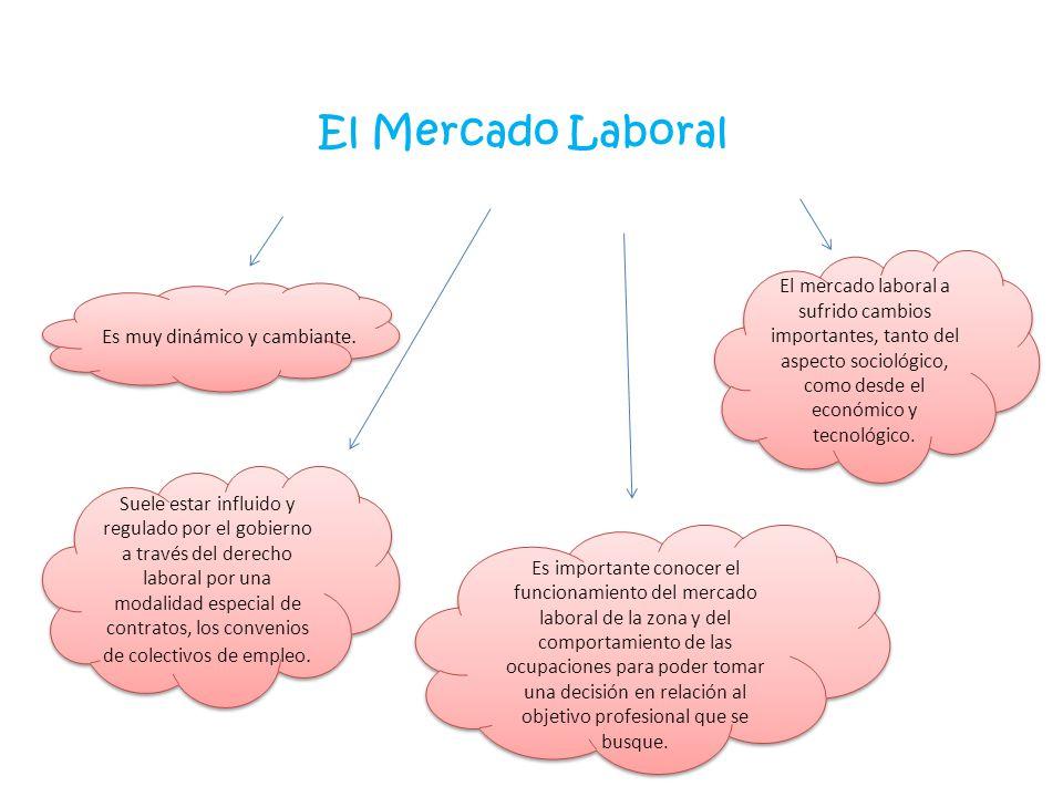 El Mercado Laboral Es muy dinámico y cambiante. Suele estar influido y regulado por el gobierno a través del derecho laboral por una modalidad especia