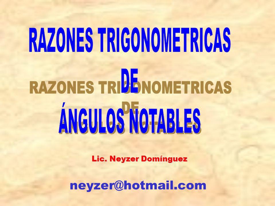 Lic. Neyzer Domínguez neyzer@hotmail.com
