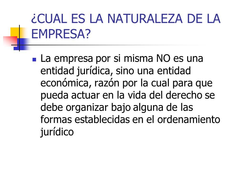 DEFINICIÓN DE LOS ELEMENTOS Patrimonio neto Parte residual de los activos de la empresa, una vez deducidos todos sus pasivos.