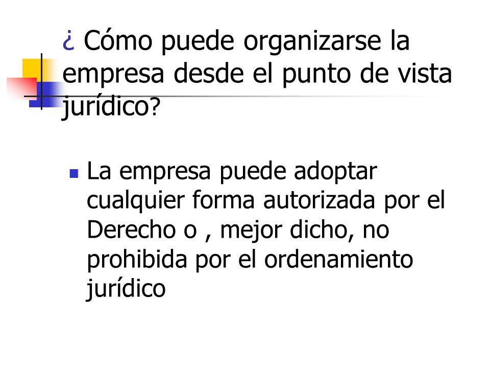 ¿ Cómo puede organizarse la empresa desde el punto de vista jurídico .