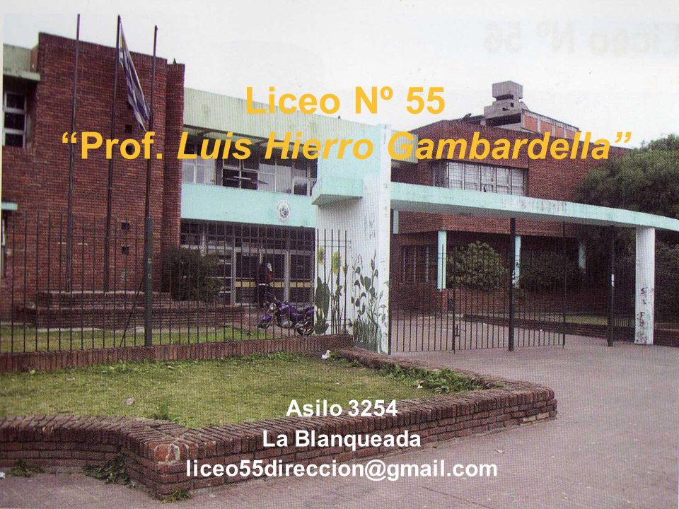 Liceo Nº 55 Prof. Luis Hierro Gambardella Asilo 3254 La Blanqueada liceo55direccion@gmail.com