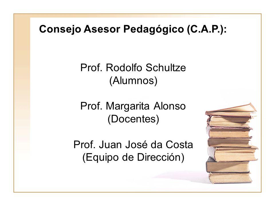 Consejo Asesor Pedagógico (C.A.P.): Prof. Rodolfo Schultze (Alumnos) Prof. Margarita Alonso (Docentes) Prof. Juan José da Costa (Equipo de Dirección)