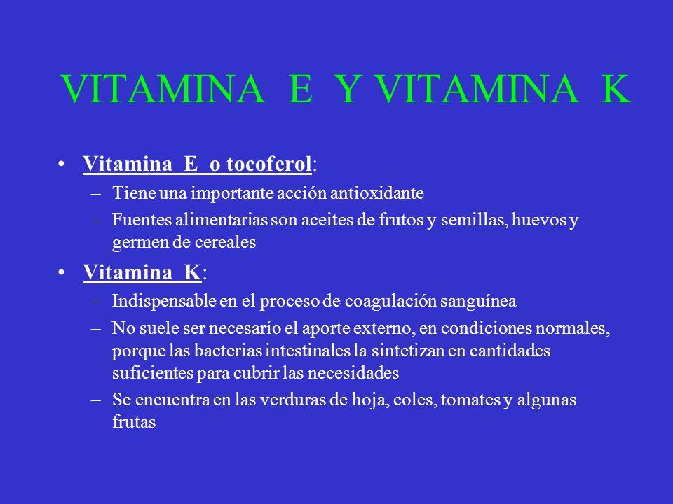 VITAMINA E Y VITAMINA K Vitamina E o tocoferol: –Tiene una importante acción antioxidante –Fuentes alimentarias son aceites de frutos y semillas, huev