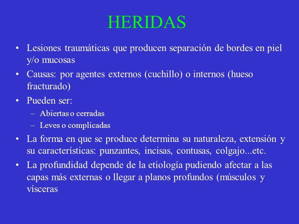 HERIDAS Lesiones traumáticas que producen separación de bordes en piel y/o mucosas Causas: por agentes externos (cuchillo) o internos (hueso fracturad