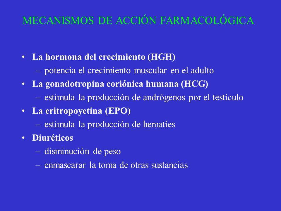 MECANISMOS DE ACCIÓN FARMACOLÓGICA La hormona del crecimiento (HGH) –potencia el crecimiento muscular en el adulto La gonadotropina coriónica humana (