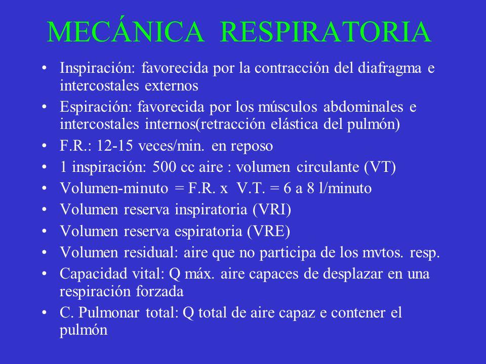 MECÁNICA RESPIRATORIA Inspiración: favorecida por la contracción del diafragma e intercostales externos Espiración: favorecida por los músculos abdomi