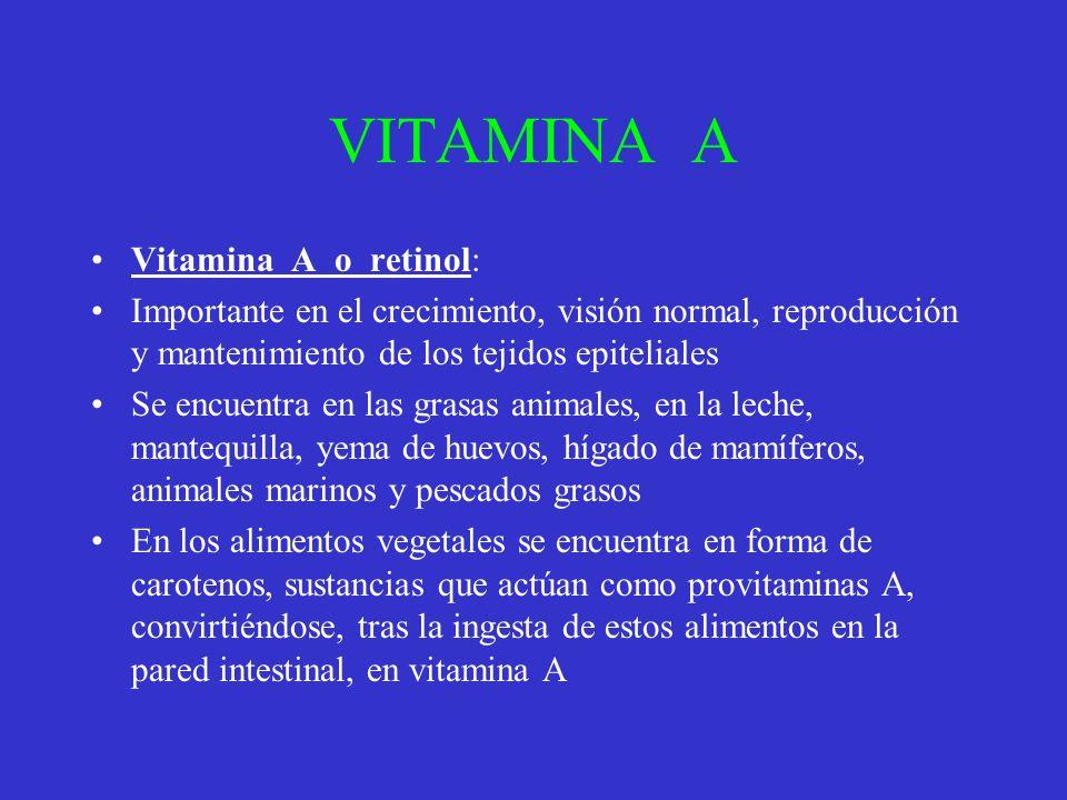 VITAMINA A Vitamina A o retinol: Importante en el crecimiento, visión normal, reproducción y mantenimiento de los tejidos epiteliales Se encuentra en