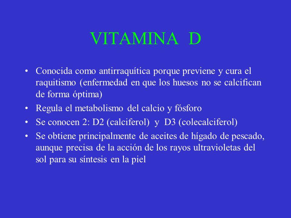 VITAMINA D Conocida como antirraquítica porque previene y cura el raquitismo (enfermedad en que los huesos no se calcifican de forma óptima) Regula el