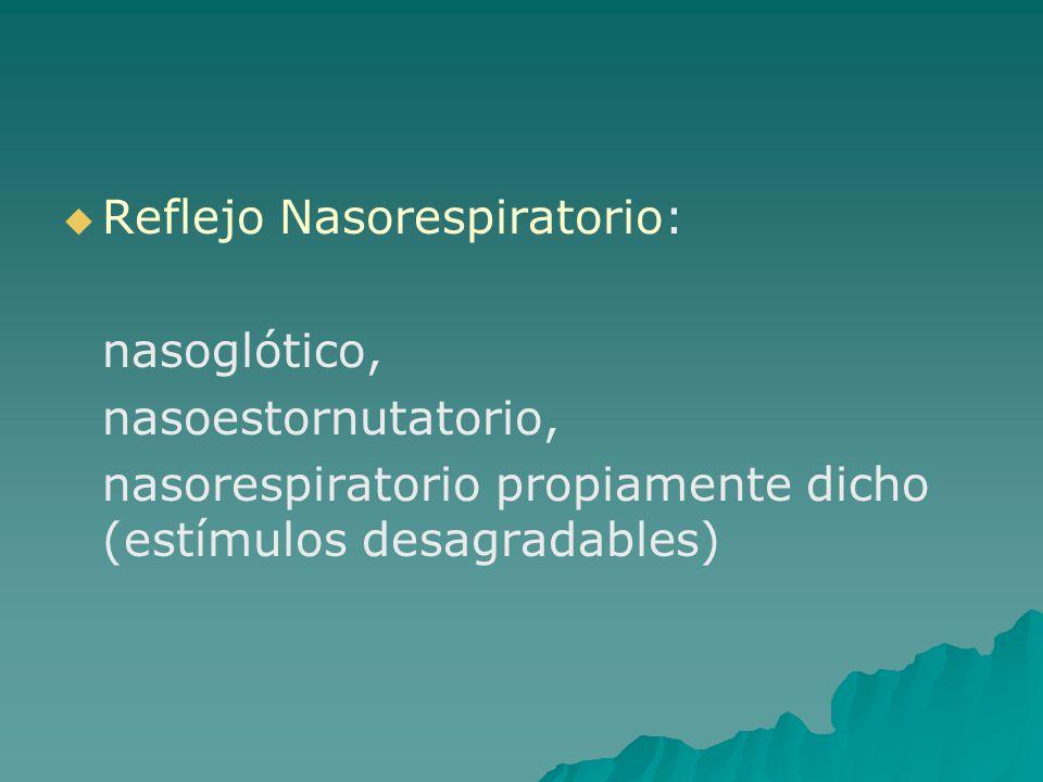 Reflejo Nasorespiratorio: nasoglótico, nasoestornutatorio, nasorespiratorio propiamente dicho (estímulos desagradables)