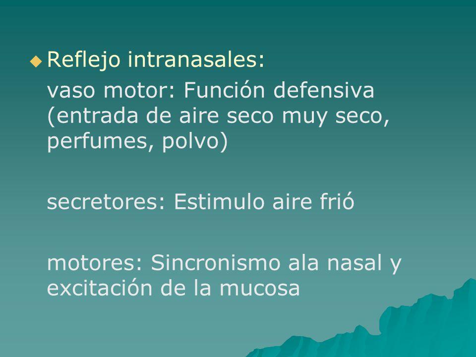 Reflejo intranasales: vaso motor: Función defensiva (entrada de aire seco muy seco, perfumes, polvo) secretores: Estimulo aire frió motores: Sincronis