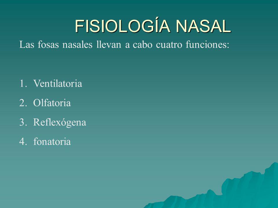 Las fosas nasales llevan a cabo cuatro funciones: 1.Ventilatoria 2.Olfatoria 3.Reflexógena 4.fonatoria FISIOLOGÍA NASAL