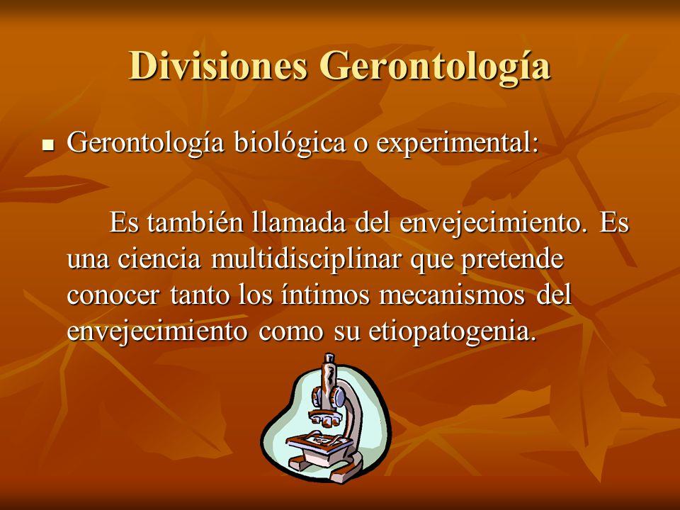 Divisiones Gerontología Gerontología biológica o experimental: Gerontología biológica o experimental: Es también llamada del envejecimiento. Es una ci