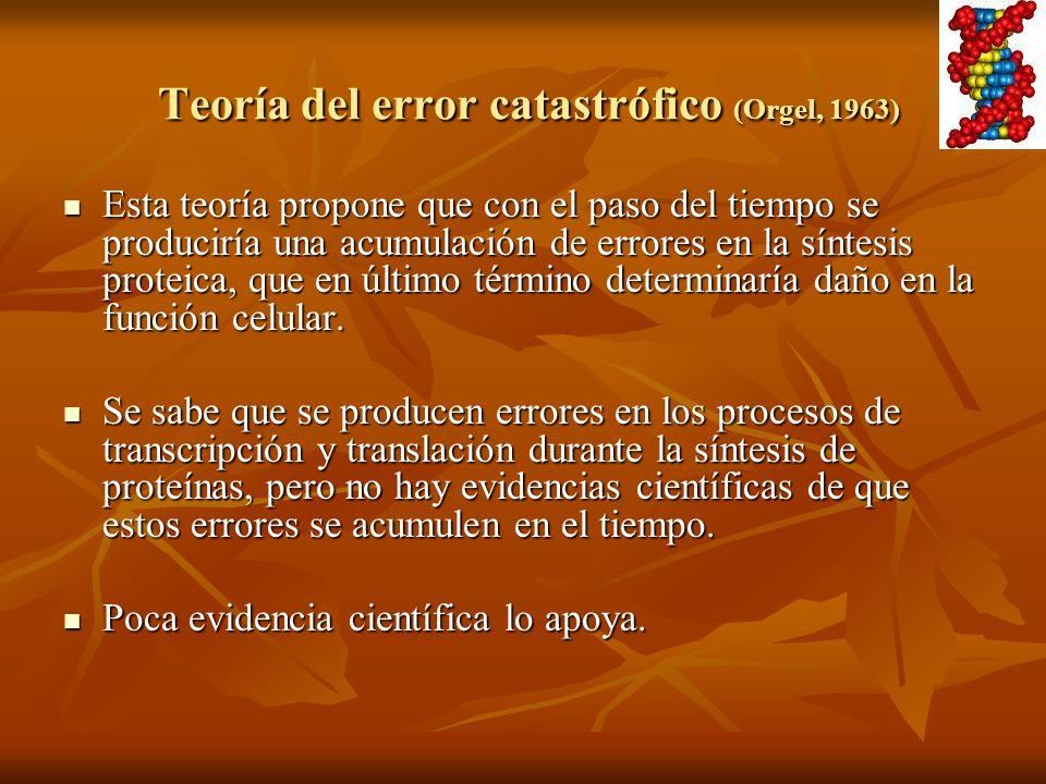 Teoría del error catastrófico (Orgel, 1963) Teoría del error catastrófico (Orgel, 1963) Esta teoría propone que con el paso del tiempo se produciría u