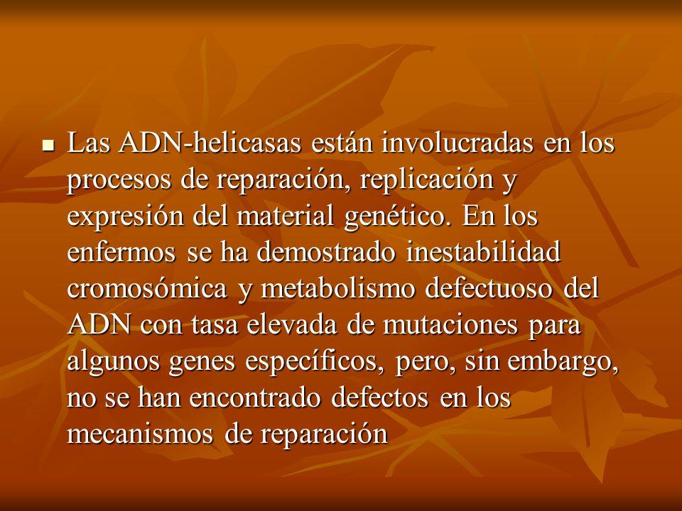 Las ADN-helicasas están involucradas en los procesos de reparación, replicación y expresión del material genético. En los enfermos se ha demostrado in