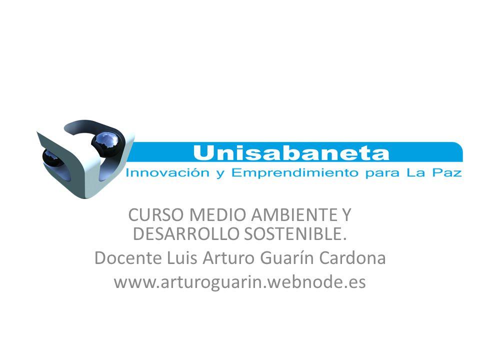 CURSO MEDIO AMBIENTE Y DESARROLLO SOSTENIBLE. Docente Luis Arturo Guarín Cardona www.arturoguarin.webnode.es