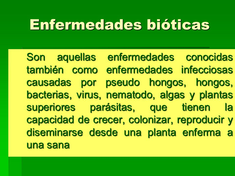 Enfermedades bióticas Son aquellas enfermedades conocidas también como enfermedades infecciosas causadas por pseudo hongos, hongos, bacterias, virus,